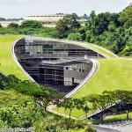tetti verdi Scuola d'arte, design e media - Singapore